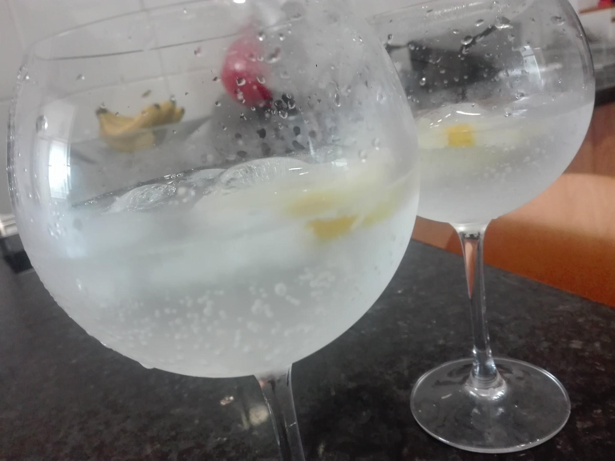 gin com gengibre